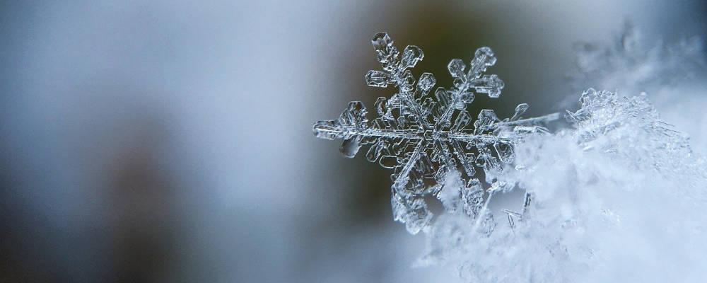 Leise rieselt der Schnee …